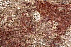 предпосылка увяла выдержанная древесина Стоковые Фотографии RF