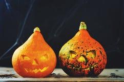 Предпосылка ужаса хеллоуина с сетью и тыквами ` s паука Стоковая Фотография