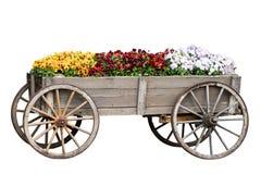 Предпосылка украшения Крупный план декоративных старых больших деревянных тележки или фуры с много красочных цветков изолированны стоковые фото