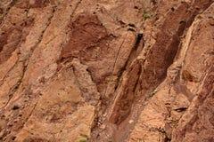 Предпосылка утеса горы коричневого цвета Стоковые Изображения RF