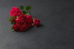 предпосылка флористическая подняла Стоковые Изображения