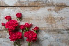 предпосылка флористическая подняла Стоковое Изображение