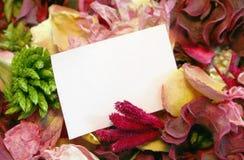 предпосылка флористическая Стоковые Изображения