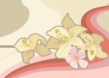 предпосылка флористическая Стоковые Фотографии RF