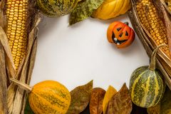 Предпосылка хеллоуина с листьями и тыквами Стоковые Фото