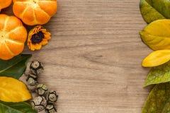 Предпосылка хеллоуина с листьями и тыквами Стоковые Изображения RF