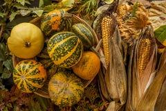 Предпосылка хеллоуина с листьями и тыквами Стоковое фото RF