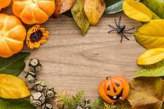 Предпосылка хеллоуина с листьями и тыквами Стоковые Изображения