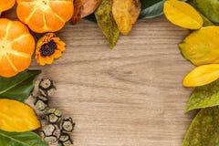 Предпосылка хеллоуина с листьями и тыквами Стоковое Изображение RF