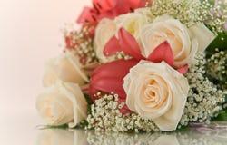 предпосылка цветет белизна Стоковое Изображение
