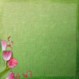 предпосылка цветет весна иллюстрация штока