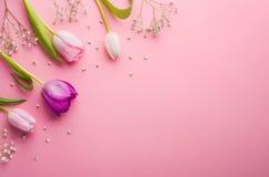 предпосылка цветет пинк изображения фрактали Стоковые Изображения RF