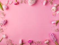 предпосылка цветет пинк изображения фрактали Стоковое Изображение RF
