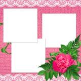 предпосылка цветет пинк рамки Стоковое фото RF