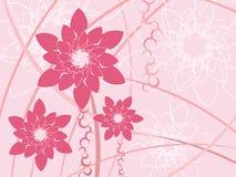 предпосылка цветет розовое стилизованное Стоковые Изображения RF