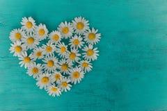 Предпосылка цветет, цветочный узор, взгляд сверху, картина цветков Текстура картины цветков, красивая предпосылка цветков стоковая фотография rf