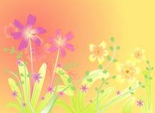 Предпосылка цветка весны Стоковые Фотографии RF