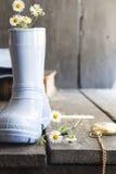 Предпосылка цветка осени, маргаритки в ботинке и карманный вахта Стоковые Изображения