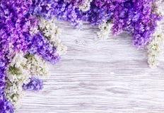 Предпосылка цветка сирени, цветки цветенй розовые на деревянной планке стоковая фотография rf