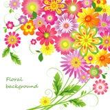 Предпосылка цветка Стоковое фото RF