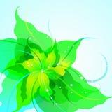 Предпосылка цветка EPS10 Стоковые Фотографии RF