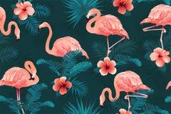 Предпосылка цветков красивой птицы фламинго тропическая вектор картины безшовный Стоковые Изображения
