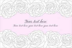 предпосылка чешет розы приглашения розовые белые Стоковые Изображения RF