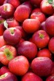 предпосылка яблока Стоковые Изображения