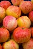 предпосылка яблока Стоковое Фото