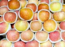предпосылка яблока Стоковые Фотографии RF