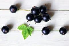 Предпосылка ягоды черной смородины Стоковая Фотография RF