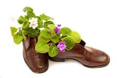 предпосылка boots белизна цветков старая лиловая Стоковое Изображение