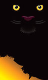 предпосылка eyes пантера Стоковое Фото