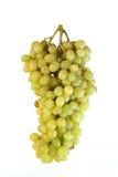 предпосылка fruits белизна виноградины Стоковые Изображения RF