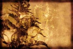 Предпосылка Grunge с розами стоковое фото