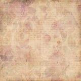 Предпосылка Grungy ботанических роз сбора винограда затрапезная Стоковое фото RF