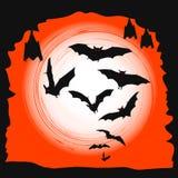 Предпосылка Halloween - летучие мыши летания в полнолунии Стоковая Фотография