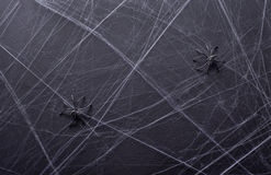 предпосылка halloween серая текстура Сеть ` s паука Стоковая Фотография RF