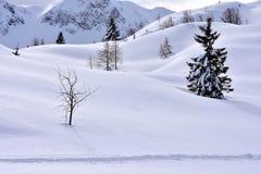 Предпосылка Snowy зимы ландшафта минимализма стоковое изображение