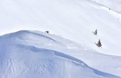 Предпосылка Snowy зимы ландшафта минимализма стоковая фотография