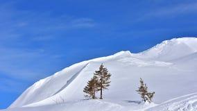 Предпосылка Snowy зимы ландшафта минимализма стоковая фотография rf