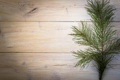 предпосылки голубой рождества темноты вал снежинок ели темно Стоковое фото RF