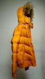 предпосылки куртка вниз серая Стоковое Изображение RF