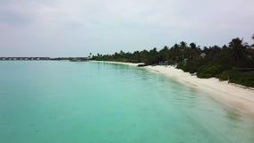 Предпосылки пляжа Мальдивов остров рая красивой белый песочный тропический видеоматериал