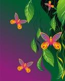 предпосылки флористические Стоковое Изображение