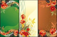 предпосылки флористические Стоковые Изображения RF