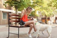 Предприниматель обрабатывая ее retriever labrador с мороженым outdoors стоковые фотографии rf