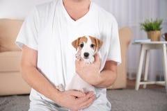 Предприниматель с милой смешной собакой дома, стоковые изображения rf