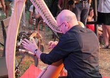 Представление музыканта арфиста стоковое фото rf