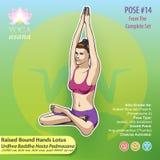 Представление 14 представления лотоса рук йоги Стоковое Изображение